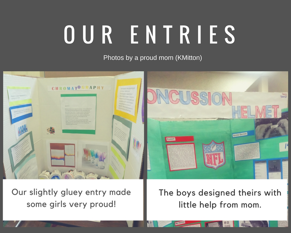 Our Entries