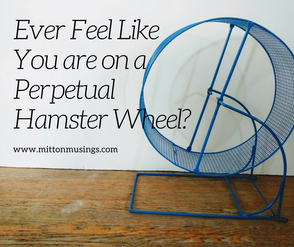 Ever Feel Like You are on the Perpetual Hamster Wheel_