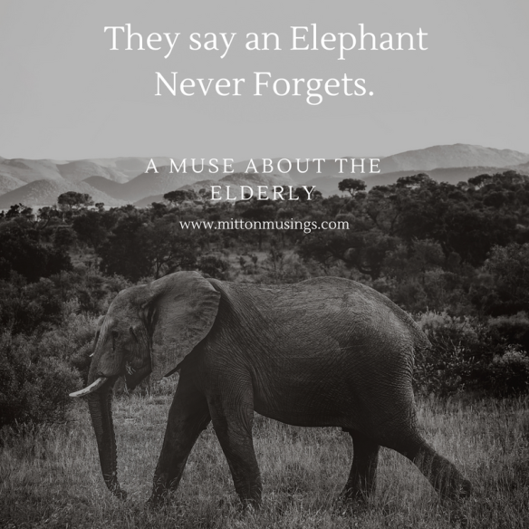 Elephantneverforgets